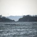 Photos: 奥松島 06