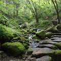 Photos: 御岳山_ロックガーデン