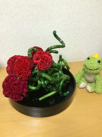 オドロオドロしい花